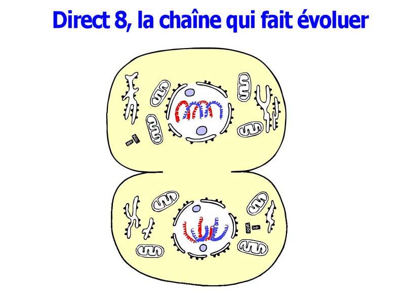 http://ficc.free.fr/direct8/upload/Montages/divers/mitose.jpg