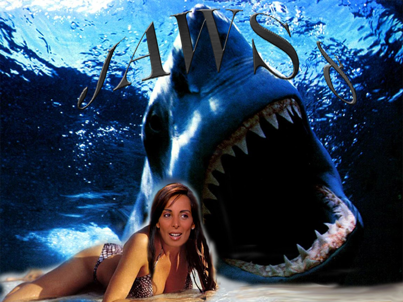 http://ficc.free.fr/direct8/upload/Montages/jaws8.jpg